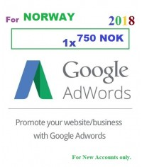 750 NOK Google Adwords Coupon Norway for 2018