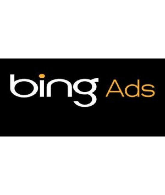 $100 USD bing ads coupon -Working Worldwide